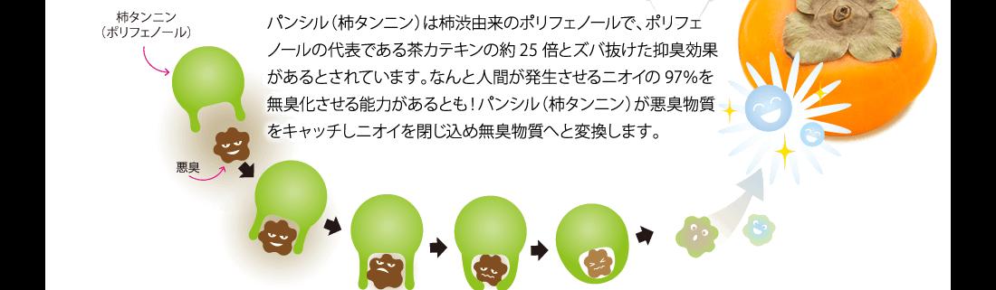パンシル(柿タンニン)は柿渋由来のポリフェノールで、ポリフェノールの代表である茶カテキンの約25倍とズバ抜けた抑臭効果があるとされています。なんと人間が発生させるニオイの97%を無臭化させる能力があるとも!パンシル(柿タンニン)が悪臭物質をキャッチしニオイを閉じ込め無臭物質へと変換します。