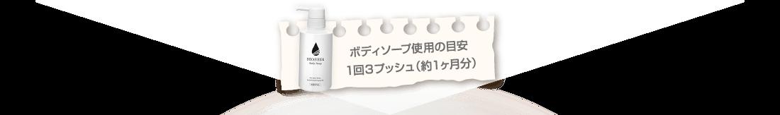 ボディソープ使用の目安 1回3プッシュ (約1ヶ月分)