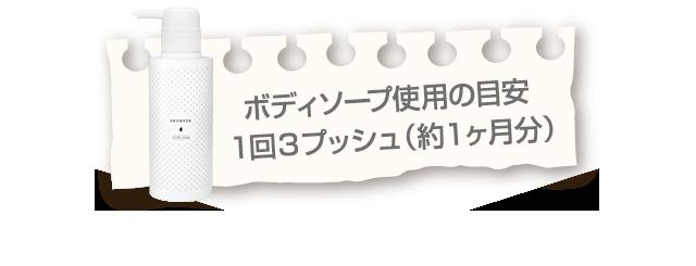 ボディソープ使用の目安1回3プッシュ(約1ヶ月分)