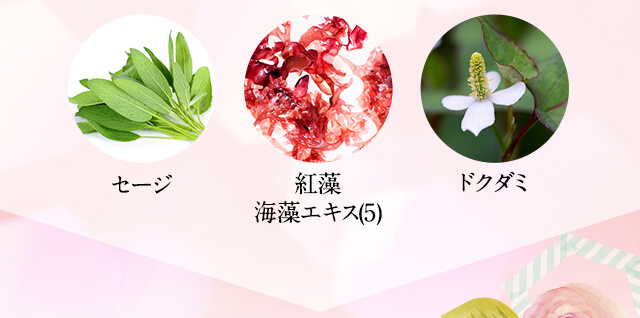 セージ 紅藻海藻エキス(5) ドクダミ